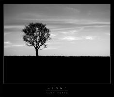 Alone by wulfster