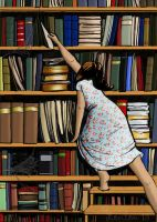 The Book Shelf by Loulou13