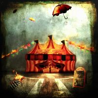 Welcome to the circus by Nonko