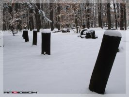 Snow Poles by madiO