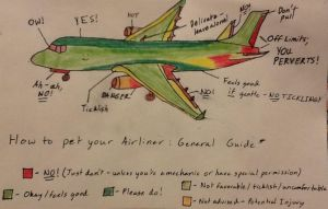 How to pet your Airliner: GENERAL GUIDE by Northwestern-Viola13