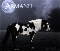 Armand by Unknownandfrantic