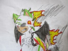Aeron the hedgehog as the Ghost Rider by Highlynx