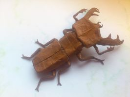 Stag beetle 3.5 - finally! by palaeorigamipete