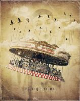 Flying Circus by crilleb50