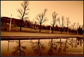 parc lac red-ish by OviXPhotography