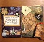 Art Journal: Wizards and Pirates by Alaminia
