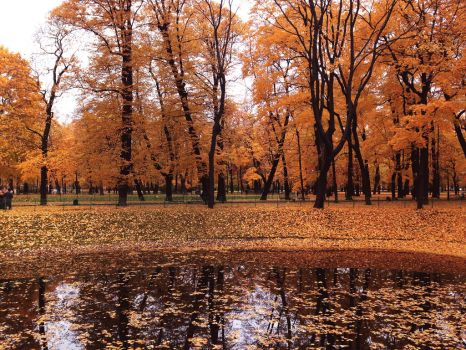 Fall in St. Petersburg by 0palesque