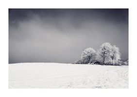 Winter Hill by jonorenton