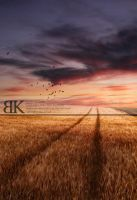 Fields of Gold by slight-art-obsession