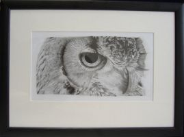 Owl Final Piece by AndyBuck
