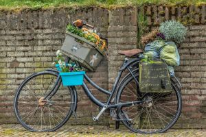 Dutch bike... by clochartist-photo