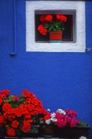 blue and red by Giampictures