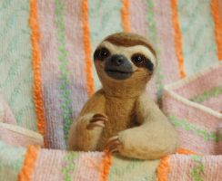 Felted sloth by SkojSkoj