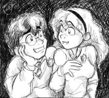 Harry-Hermione for Staredcraft by irishgirl982