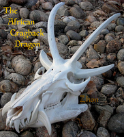 Cragback Dragon Skull by Zhon