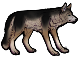 Wolf Auction Closed by AdoptablesOfAllKinds