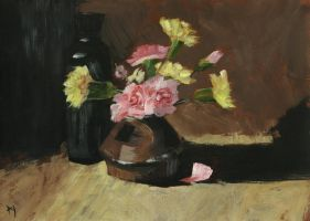 Carnations by h-i-l-e-x