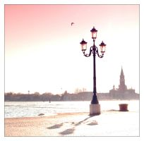 The Soft Pink Light of Freedom by Metiu