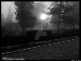 The fog in my city by Rely