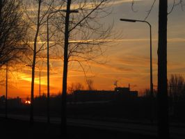 11-02-09 The Sunrise by Herdervriend