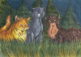 Warrior Cats - The first Contact by StarlightsMarti