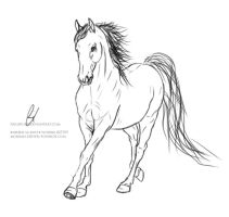 Cantering Horse Lineart. by paigepony