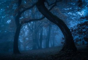 Enter if you dare by aw-landscapes