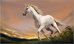 White Stallion by BLACKNIGHTINGALE81