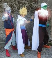Dragon ball cosplay by AleDiri