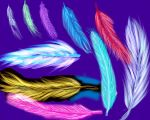 Feathers by Cians-Sacred-Lair
