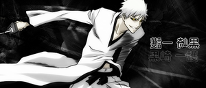 Ichigo: The Hollow Within by Termed