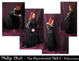 The Obscurantist - Pack 4 by Meltys-stock