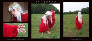 Inuyasha is Real by nillia