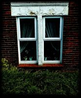 a front window by awjay