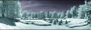Old Hamburg Graveyard Infrared by MichiLauke