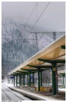 Sinaia station by Iulian-dA-gallery