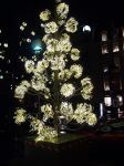 Light up the streets by Mireilles-epitaph