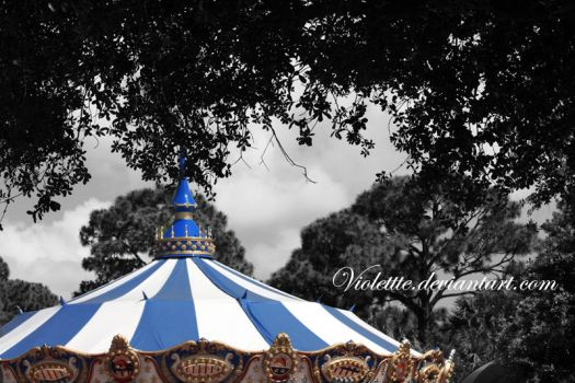 carousel by Violettte