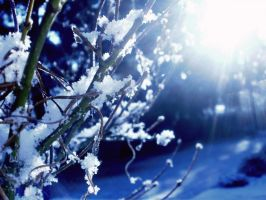 snow and sun by xox-Brittany-xox