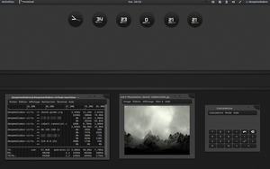 dark deepin linux in vbox by chicoray