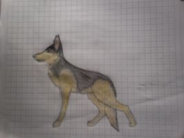 dog 1# by paty13