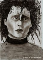 Edward Scissorhands by Seian92