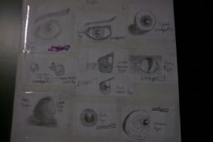 Various Eyes by greekgirl13