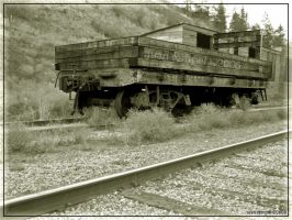 Rail Car Black'n White by NaujTheDragonfly