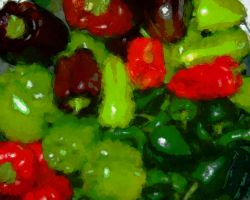 peppers by ChaelMontgomery