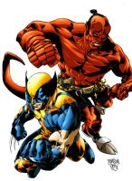 Hellboy and Wolverine colours by Creation-Matrix