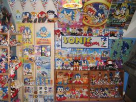 My Sonic Room 2010 by sonicrules100