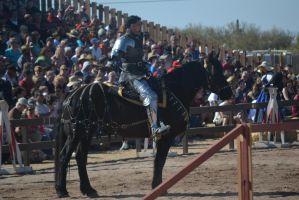 Jousting - 3 by Silver-Stock-Images