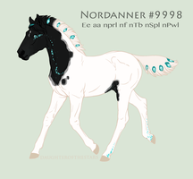 Foal #9998 by NorthEast-Stables